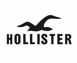 Hollister Free Shipping