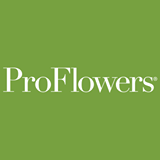 Proflowers Free Shipping