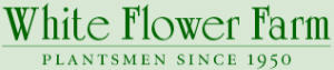 White Flower Farm Free Shipping